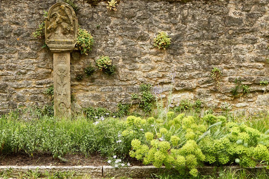 abbey_wall_2926